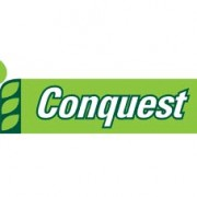 logo-conquest-wheat-luisetti