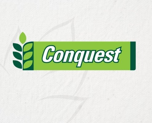 Luisetti Seeds Conquest