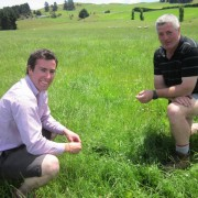 Trojan-ryegrass-with-NEA2-endophyte-has-got-off-to-a-promising-start-for-dryland-sheep-and-beef-farmer-Chris-Earl-in-the-Scargill-Valley.