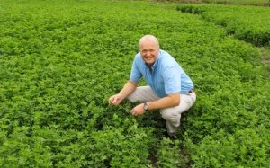 Professor Derrick Moot crouches in a field of lucerne