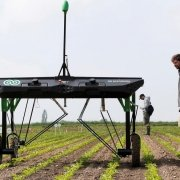 The-prototype-of-an-autonomous-weeding-machine-by-Swiss-start-up-ecoRobotix-is-pictured-during-tests-on-a-sugar-beet-field-near-Bavois