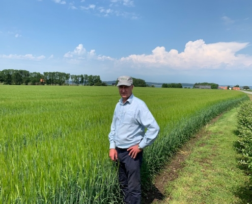 Vincent Luisetti at the Sejet breeding station in a nucleus paddock of CRBA148 barley. This cultivar has done extremely well in this year's F.A.R cultivar trials and will be available in limited quantities from Luisetti Seeds for sowing this spring