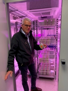 Sejet Director Birger Eriksen with cereal plants grown in agar, the first stage of the Double Haploid breeding process.