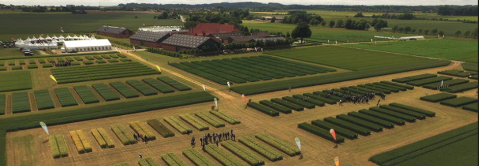 Aerial view of The annual Sejet Field Day attended by 1000 Danish and German farmers.