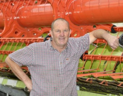 Buttress Barley Performs as Second Crop